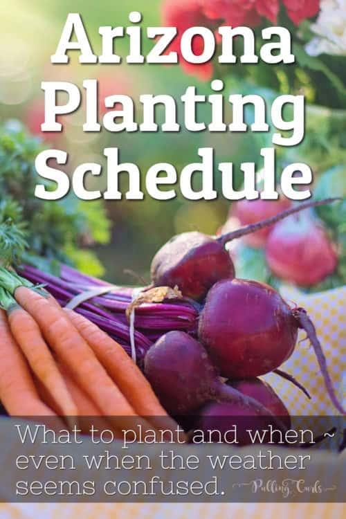 Arizona Garden / schedule /printable / planting