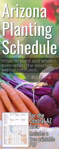 Arizona Garden / schedule /printable / planting via @pullingcurls