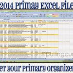 2014 Primary Excel File