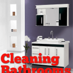 Weekly Cleaning:  Tuesdays Clean the Bathroom