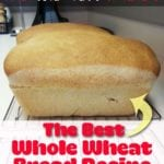 Best Whole Wheat Bread Recipe