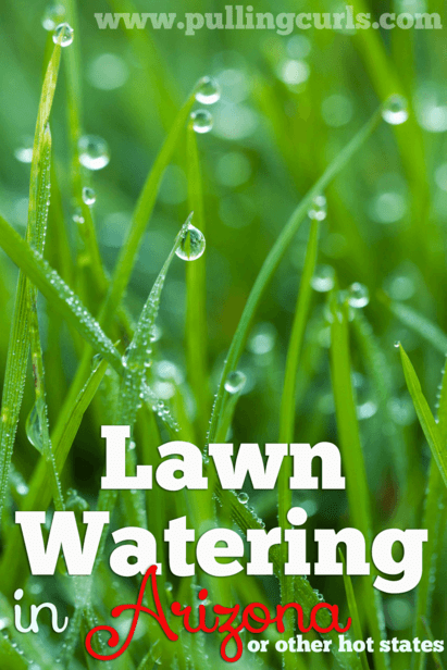 Lawn Watering in Arizona can be confusing, and you certainly don't want to WASTE water in the desert.