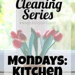 Weekly Cleaning: Mondays — Cleaning Kitchen