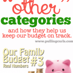 Family Budget: Other Pots