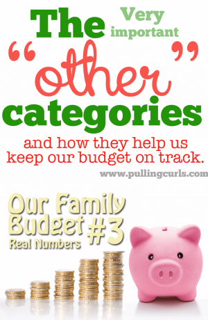 "*Includes our ACTUAL budget #'s* To make larger purchases during the month I have other ""pots"" I can take money from. Maybe that kind of budgeting idea can help you too!"