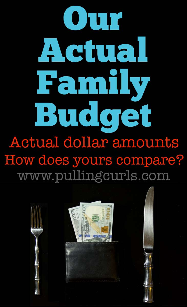 Our actual family budget, with the actual dollar amounts for each area -- groceries, clothes, utilites, etc.