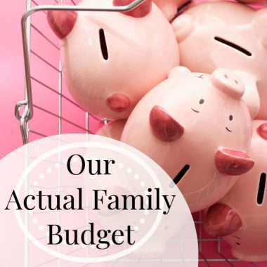 Sample budget for a family of 5