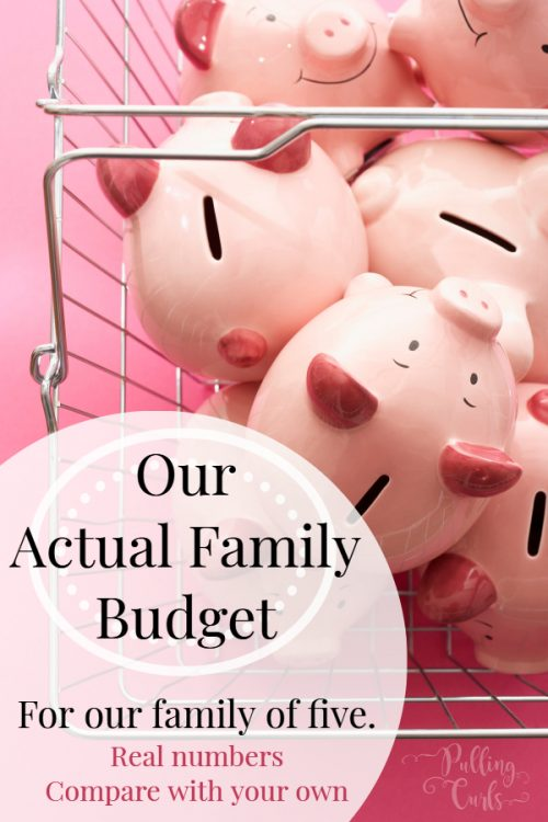 Sample budget for a family of 4