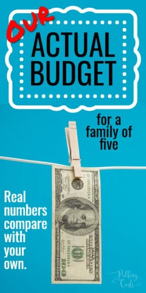 real life budget examples