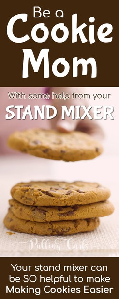 Be A Quot Cookie Mom Quot With Help From Your Stand Mixer