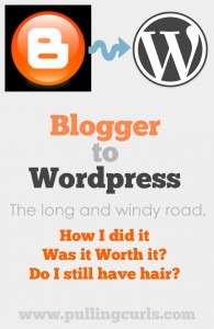 Making the change from blogger to WordPress has been a difficult one. Come find out why and how I started this journey.