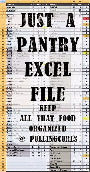 Pantry Inventory Spreadsheet | Pulling Curls