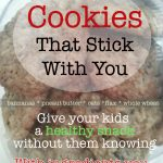 Healthy Cookies: after School Snacks