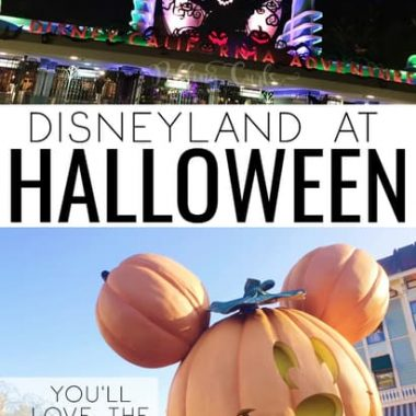 Disneyland is a premier destination for Halloween -- if you know what you're getting into. Here are 5things to know about Disneyland at Halloween include ride changes, decor and special events like Mickey's Halloween party!