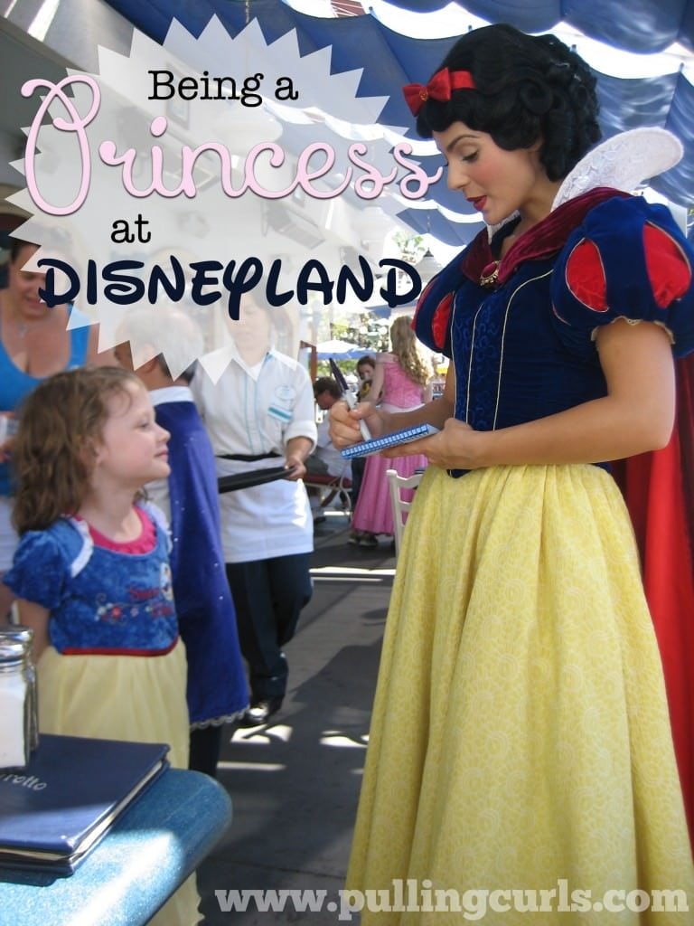 Disneyland Princess Dress