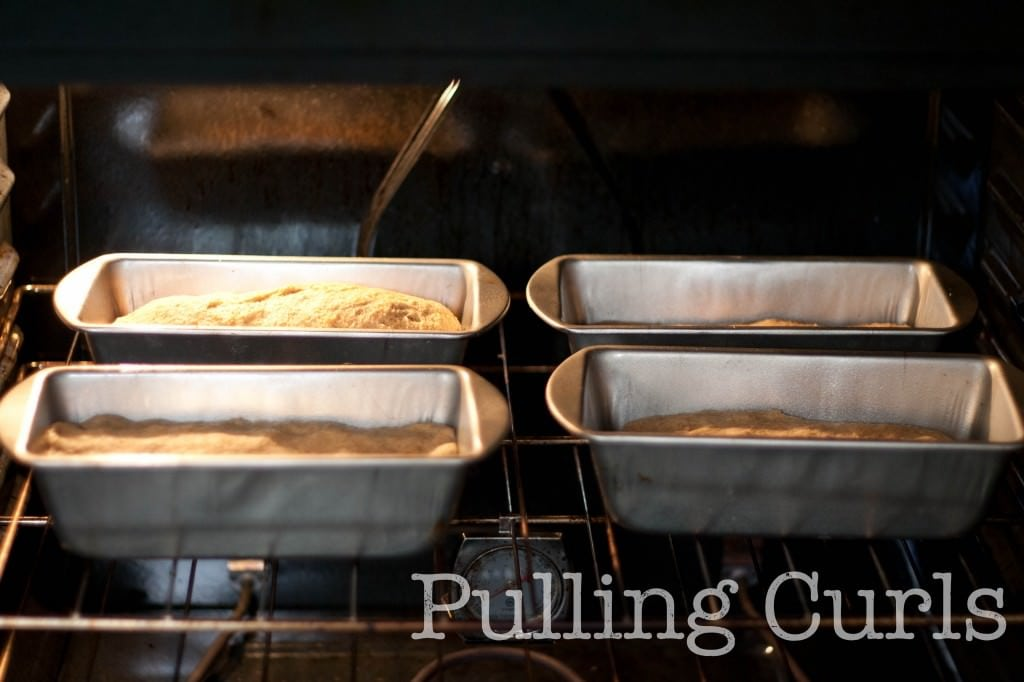 Making 4 loaves at a time, how I put them in the oven.