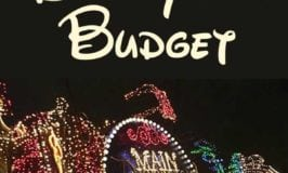 How Much Money Should I Budget for Disneyland?