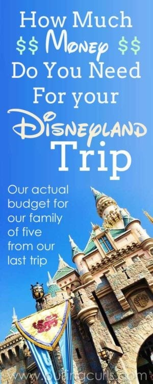 the cost of a trip to Disneyland