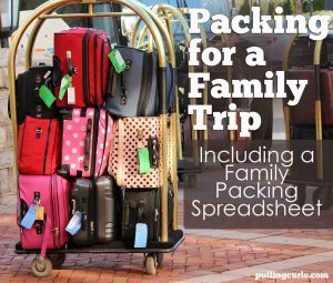 a family packing spreadsheet that will allow you customize it to your own family, but get some ideas on how to get a packing system.