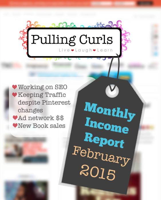 Blog Income Report for February 2015.  What's working, and what's NOT working!