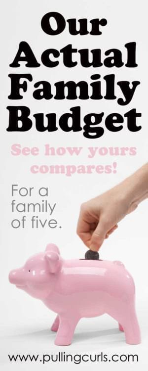 You're going to to get tons of budgeting tips as you check out my actual family budget for our family of five!