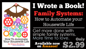 Family Systems: How to Automate your Housewife Life by Hilary Erickson