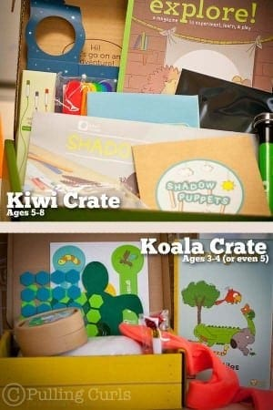Kiwi or Koala Crate is a great option for crafty and inquisitive kids!