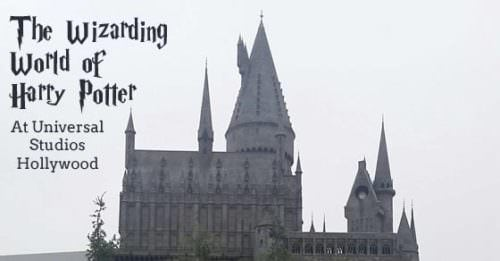 wizarding world social
