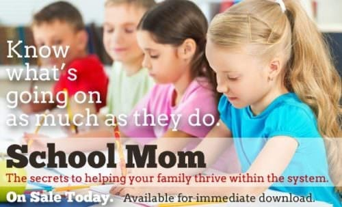 School Moms is on sale today!