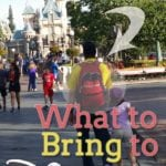 What to Bring to Disneyland:  Amusement Park Walking Pharmacy