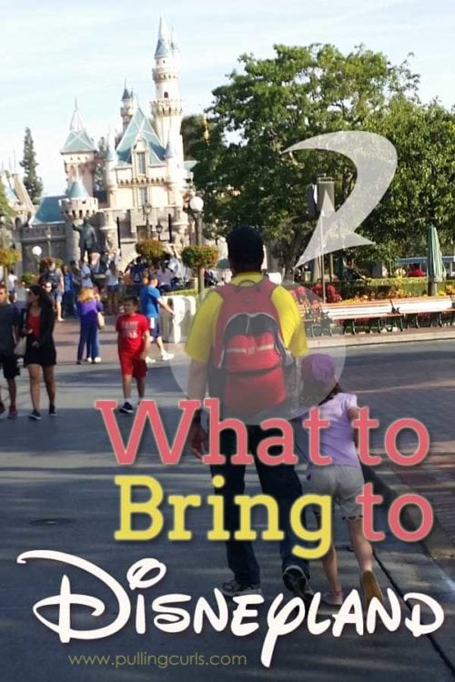 What to Bring to Disneyland