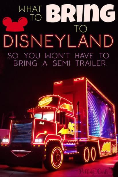 what to bring to Disneyland park
