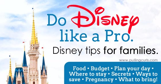 disneyland while pregnant first trimetser