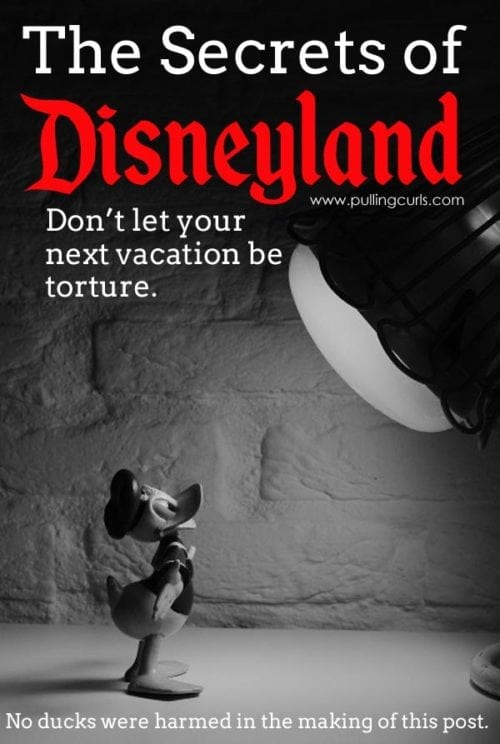 Disneyland Secrets | tips | free | food | hacks | scary | rides | parades | mickey | princess