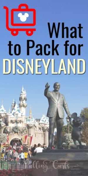 Disneyland packing list for adults