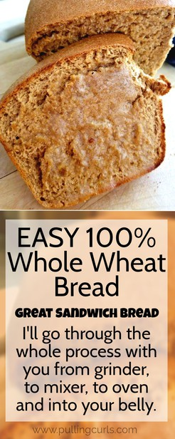 This post is going to share the nine years that I've been making 100% whole wheat bread -- this is the very best whole wheat bread recipe -- after years of trial and error. Both to eat and to make. It's simple to do, and my tricks are REALLY going to help you! Great for sandwiches or on its own! #bread #breadrecipe #wholewheat #wheatgrinder #kitchenaid #boschmixer #boschuniversal #wheatberries #wholewheatbread via @pullingcurls