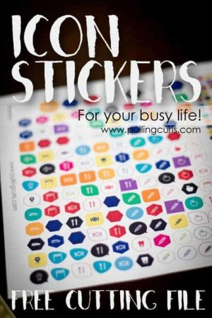 icon planner stickers | happy planner | Erin Condren | paper planner | washi tape