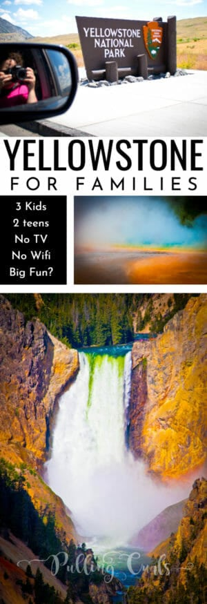 Yellowstone for families / teens /driving / buffallo / worth it?
