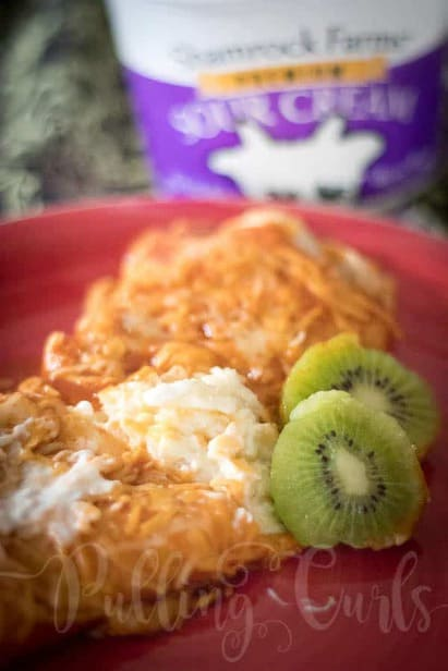 Pineapple Sour Cream Enchilads are a light treat when you're craving mexican food, but don't want something heavy!