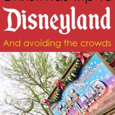 Going to Disneyland at Christmas and avoiding the crowds / tips / tricks / hotels /Courtyard / Grey Wolf