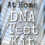 DNA Test Kit: Prenatal, Pregnancy, Boobs and Hair