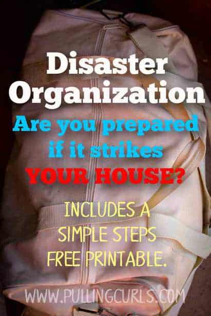 Disaster Preparedness Organization for Familes