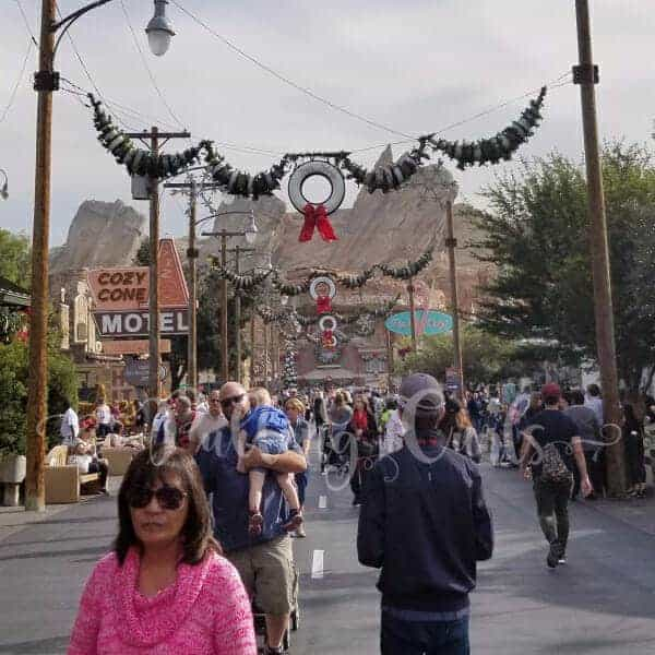 Disneyland for Christmas