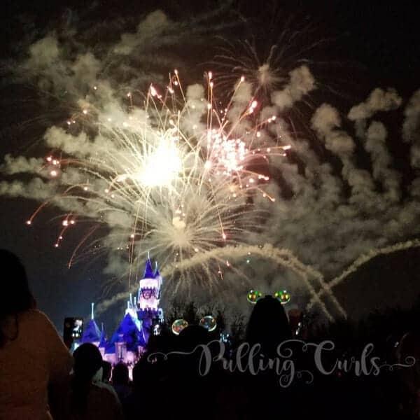 Disneyland Xmas