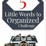 Ready for an Organization Challenge?