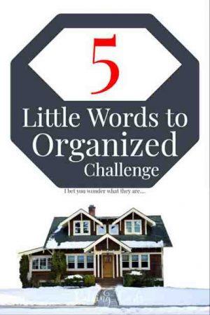 Home organization free challenge