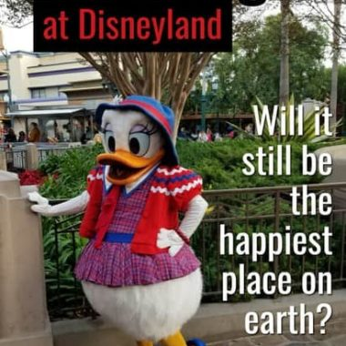 Overweight at DIsneyland - tips & tricks