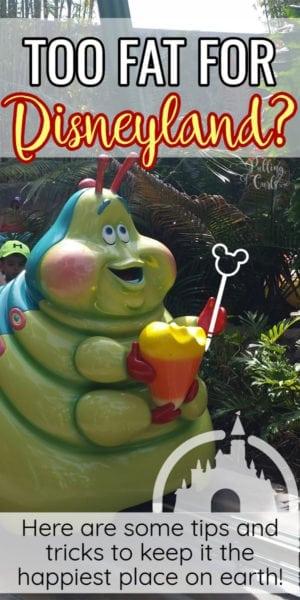 Disneyland fat friendly