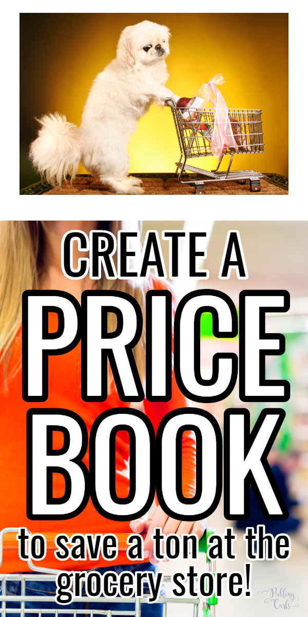 Save the VERY most week after week by knowing the BEST prices you should buy at. A grocery store price book will help you save, spend less time shopping and splurge when you find something you love. #groceries #shopping via @pullingcurls