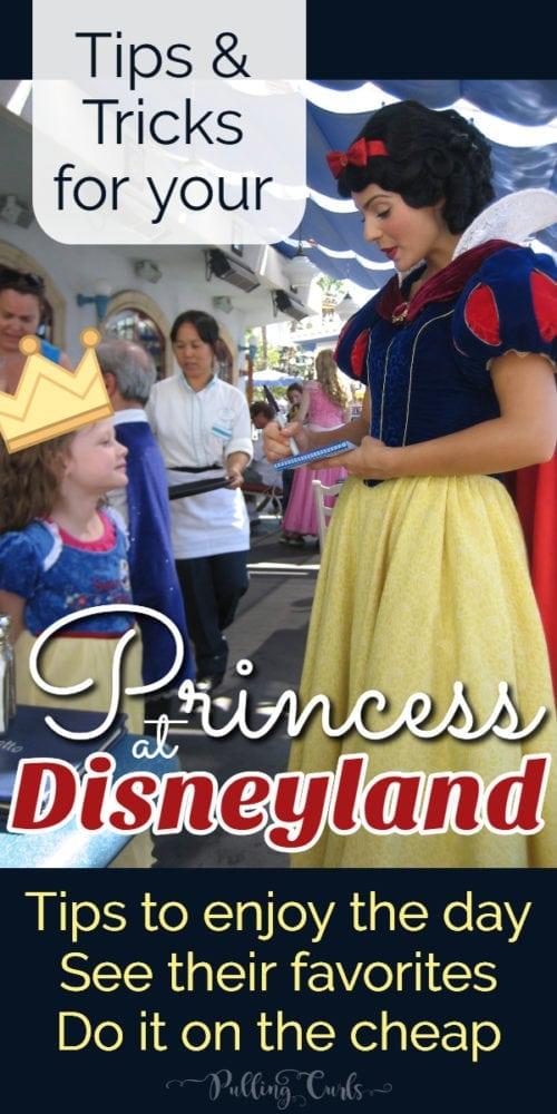 How to help your princess enjoy disneyland